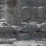 Tulum ruins- iguana's abound on this building!