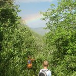 Hiking toward the end of the rainbow on pipeline trail