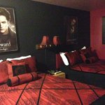 Twilight themed room. Not a fan of the creepy posters... However, Twilight fans would appreciate