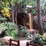 Waterfall at the back pond at Khaomao-Khaofang