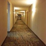 Hall on 5th Floor