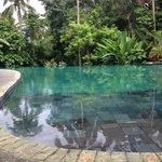Amazing pool!!!