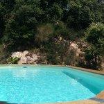 La piscine et ses 2 plages