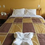 Room with clean and nice sheets