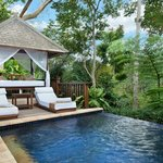 Plunge Pool Valley Pool Villa with veranda (103258559)