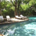 pioneers camp pool