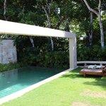 Pool  Forrest