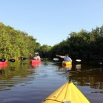 Twilight paddle tour, Everglades, FL