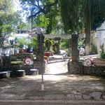 Cemitério de passáros