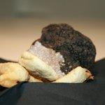 Tempura di tartufo nero. Black truffle tempura