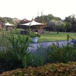 Il bellissimo giardino