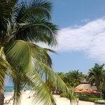 the #beach