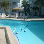 The pool/courtyard