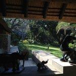 Garden Suite view
