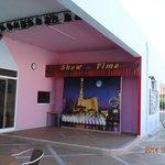 Evening entertainment place