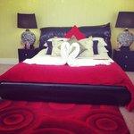 Amaryllis room :)