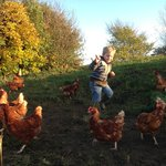 We are dedicated to sourcing quality local produce. The happy 'Wensleydale Eggs ' hens provide u
