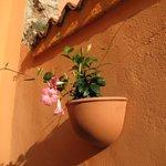 Breakfast courtyard at Hotel Al Santo