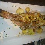 Peixe recehado com farofa de camarão