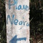 cement marker