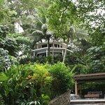 Resort bure grounds