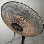 Dirty Fan in family room