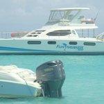Docked at Cove Bay