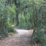 Path to enclosures