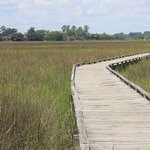 Boardwalk through salt marsh