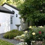 Forest Cottage Summer