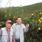 与ろゐ屋のらーめんの特徴でもある柚子は高知県北川村産のものを使用しています。