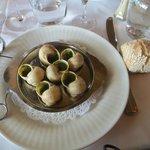 6 escargots de bourgogne
