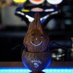 Wilton the Coconut tending the bar
