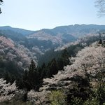 View from Yoshimizu Temple