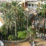 Ogród hotelowy.