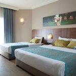 Standart Hotel Room