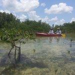 Kayaking in the refuge
