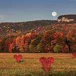 Art and nature celebrated in the Hudson Valley