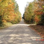 Fall colours in Monteagle Valley