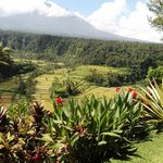 The view of Mt. Agung From Where I was seated