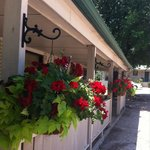 Summer flower baskets