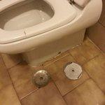 tappezzamenti nel pavimento del bagno e tavoletta rotta! ??! mah..