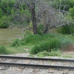 At the River Animas
