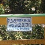 Got snow?  Don't think so