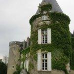 Magnifique tour entourée de lierre qui bourdonne... (?)