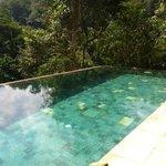 La piscina sobre el bosque