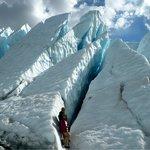 Alaska Life & Glacier Tours