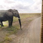 All of us enjoying time together! Amboseli