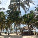 Esta es el area de la playa que tiene poc na donde esta la cancha de volley el bar y las hamacas