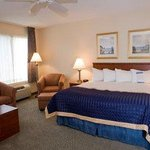 Business Suite 1 King Bed Room